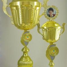Кубок Жолобовой будут вручать весной