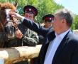 День Костромского села