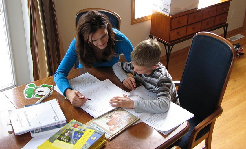 Поддержка педагогов