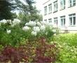Минская основная общеобразовательная школа